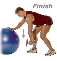 Image 2 - Dumbbell Bent-Over Row with Sissel Swiss Ball Pro