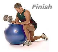Image 2 - Dumbbell Wrist Curls and Extensions on Sissel Swiss Ball Pro