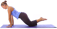 Image 1 - Yoga Position: Beginner plank