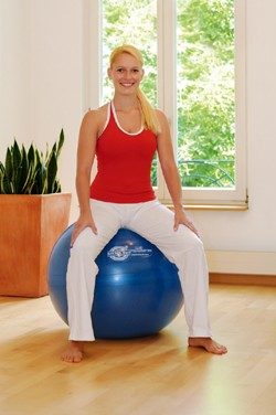 Image SISSEL® Exercise Ball, 65 cm, blå
